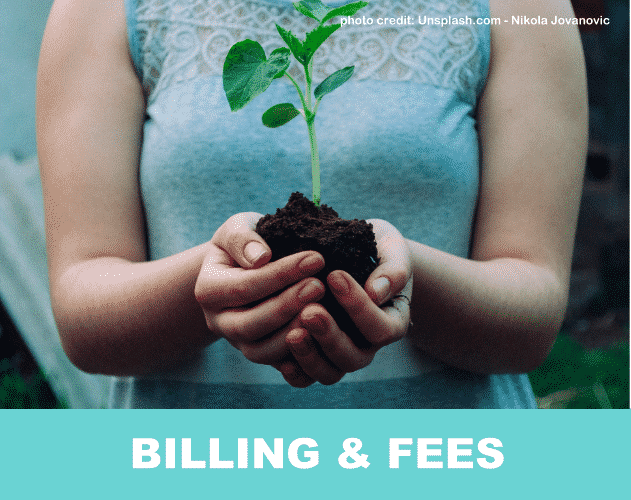 Online Counseling Billing Fees